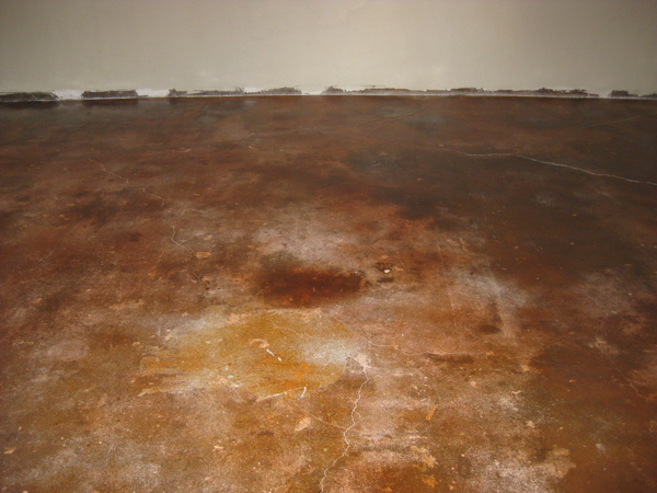 Concrete floors with stain 4.18.09