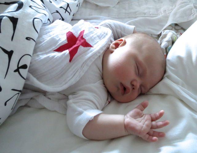 Mateo 2 months